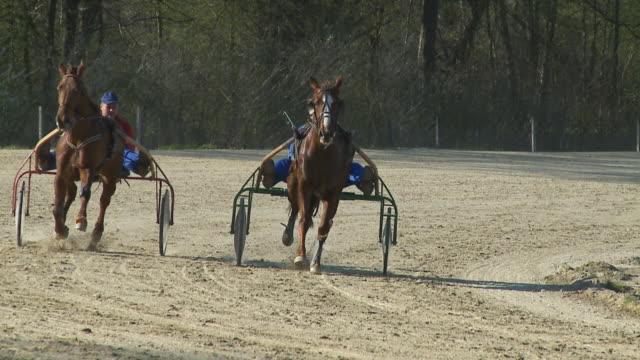hd slow-motion: horse racing - racehorse track bildbanksvideor och videomaterial från bakom kulisserna