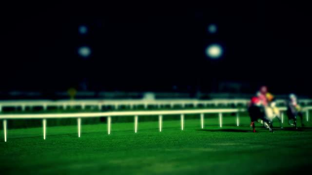 horse racing - horse racing stok videoları ve detay görüntü çekimi