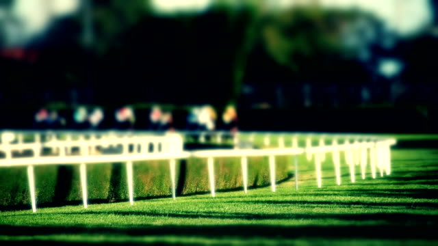 horse pferderennen - pferderennen stock-videos und b-roll-filmmaterial