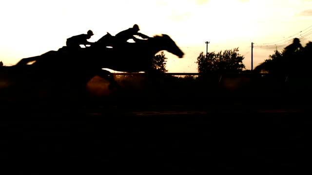 pferderennen - pferderennen stock-videos und b-roll-filmmaterial