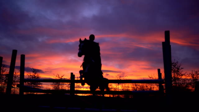 vídeos y material grabado en eventos de stock de jinete de caballos saltando sobre los obstáculos - valla artículos deportivos