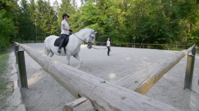 DS Horse riding practice on a longe line video
