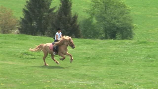 HD : À cheval équitation - Vidéo
