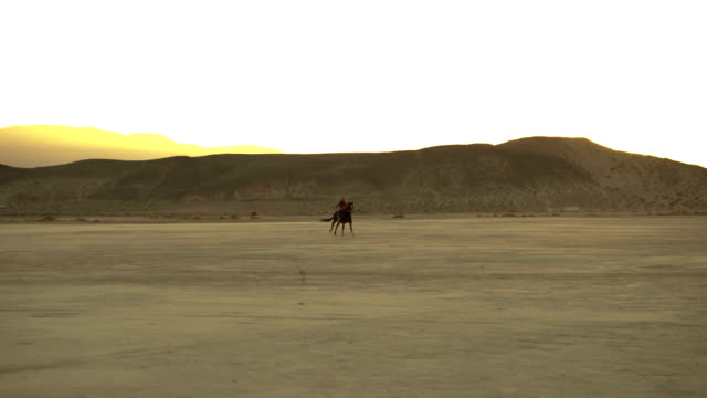 (Slow Motion) Horse Running Through the Desert video