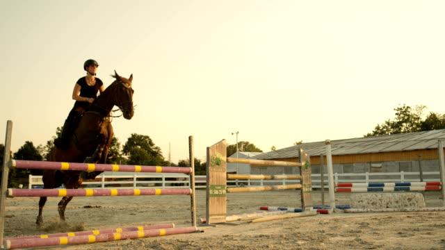 vídeos y material grabado en eventos de stock de close up funcionamiento del caballo hacia el obstáculo y saltar la valla en arena al aire libre - valla artículos deportivos