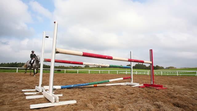 horse sport. jumping - hästhoppning bildbanksvideor och videomaterial från bakom kulisserna