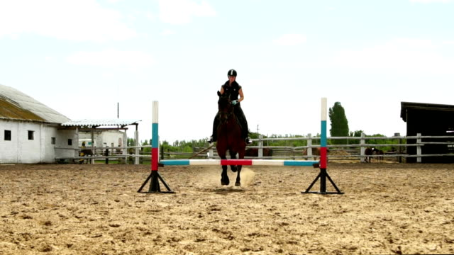 Horse woman jumps through the barrier on horseback slow motion video