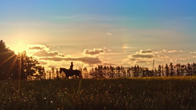 SLO MO TS Horseback riding across golden meadow at sunset