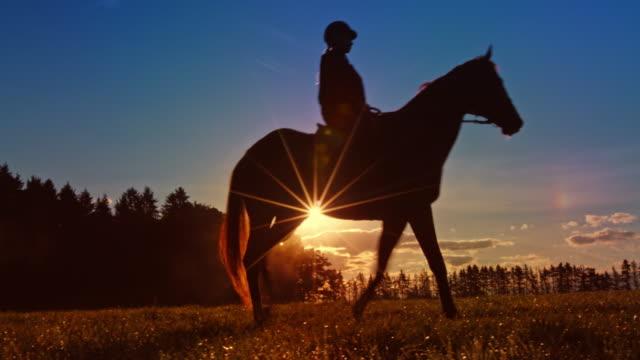 ds horseback riding across meadow in setting sun - attività equestre ricreativa video stock e b–roll