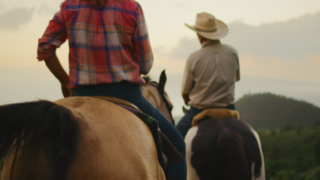 horseback riding at sunset - cowgirl video stock e b–roll