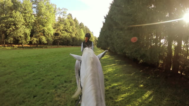POV Horseback riding behind a woman on white horse video