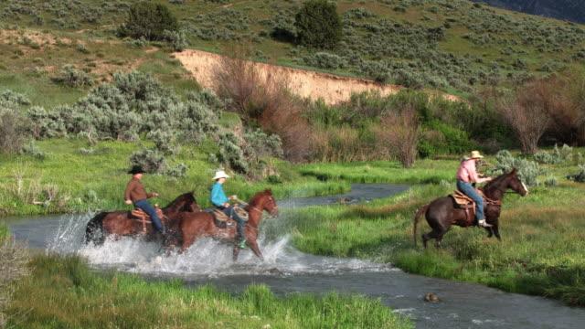 horseback riding in utah - stile del xix secolo video stock e b–roll