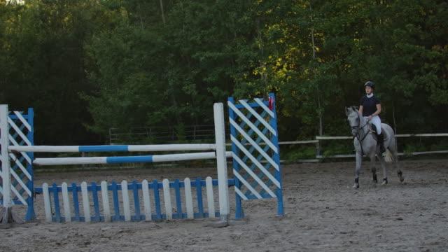 slow motion, close up, low angle: equina che cavalca un forte cavallo marrone saltando la recinzione in soleggiata arena di dressage di parkour sabbiosa all'aperto. allenamento competitivo dei motociclisti che salta sugli ostacoli nel manege. - stallone video stock e b–roll