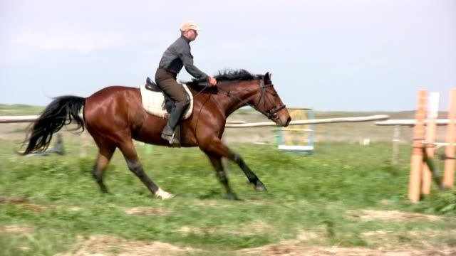 stockvideo's en b-roll-footage met horseman jamps - alleen één mid volwassen man