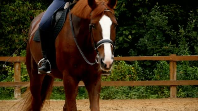 Horseman on horseback  close to