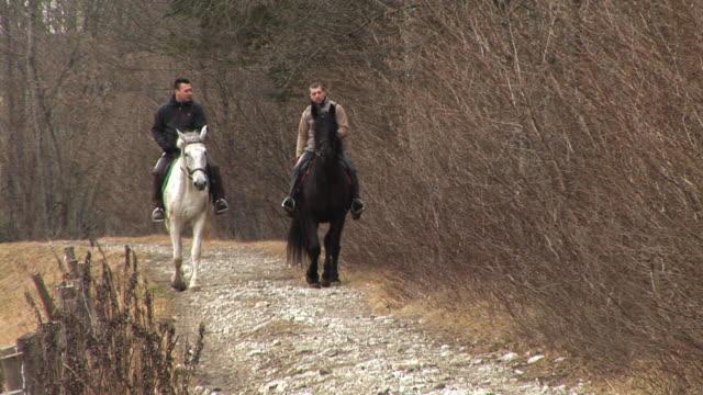 hd: horseriding in natura - attività equestre ricreativa video stock e b–roll