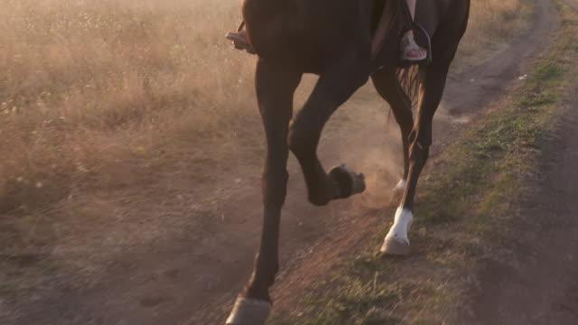 Horse's legs kicking up dust on dry soil. Horseback riding slow motion.