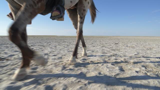 horse's legs - siodło filmów i materiałów b-roll