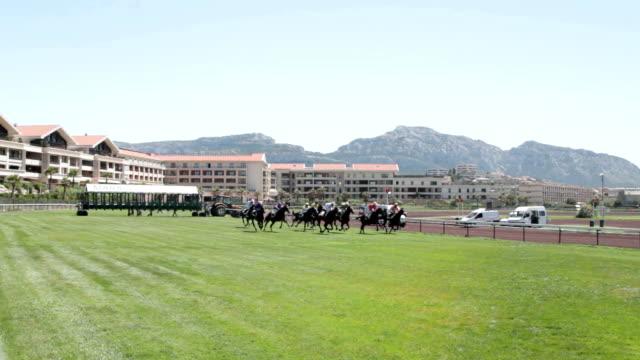 atlar yarış başlangıç marsilya racecourse - horse racing stok videoları ve detay görüntü çekimi