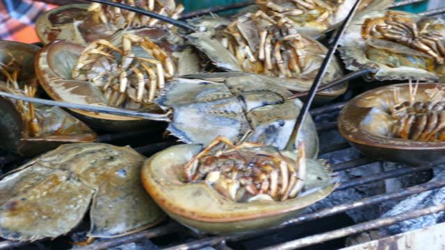 Horseshoe crabs video
