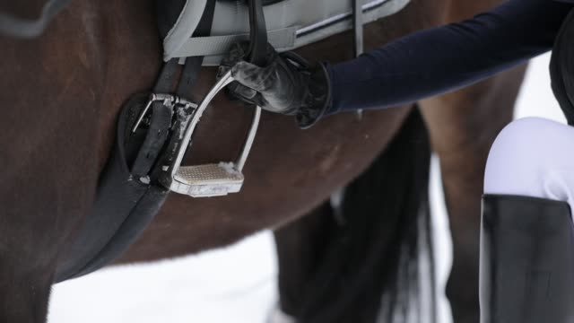 Horsewoman climbs up on horseback in a snowy winter day, close up video