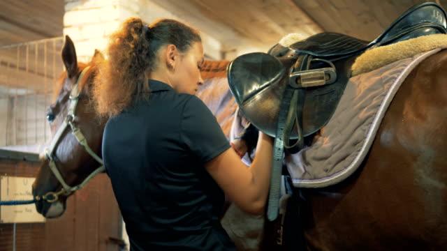vidéos et rushes de horsewoman attache les ceintures sur une selle, gros plan. - grange