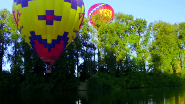 Hot air balloons by trees video