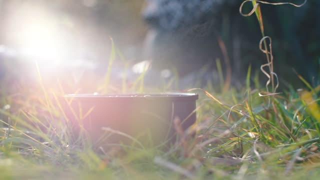 sıcak kahve bir kamp gezisinde çim üzerinde duruyor. - bunsen beki stok videoları ve detay görüntü çekimi
