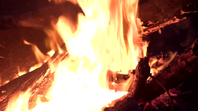 Hot fire with wood Hot fire burning wood in forest during the night k icon stock videos & royalty-free footage
