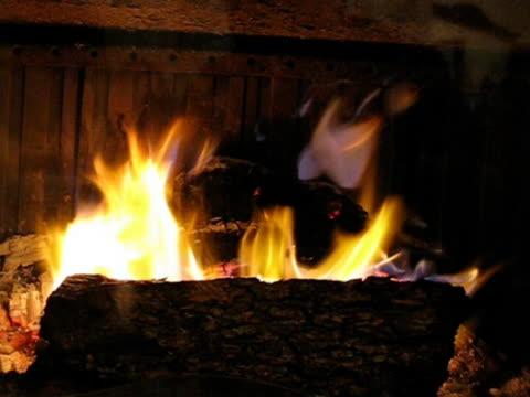 caldo camino in legno pieno di fuoco - parte della pianta video stock e b–roll