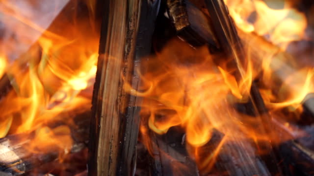 Hot Fireplace Full Of Wood With The Trees Crackling And Bird