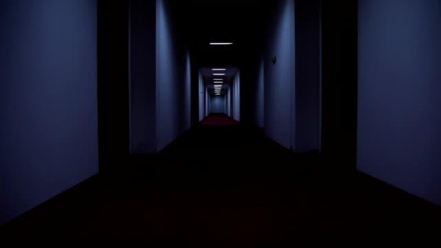 corridoio dell'hotel - lungo video stock e b–roll