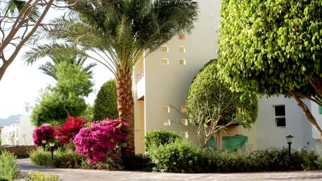 Hotel facade in Egypt video