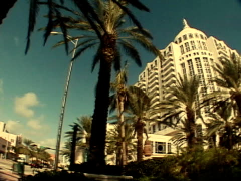Hotel Palms Palm trees in front of beautiful hotel flowering plant stock videos & royalty-free footage