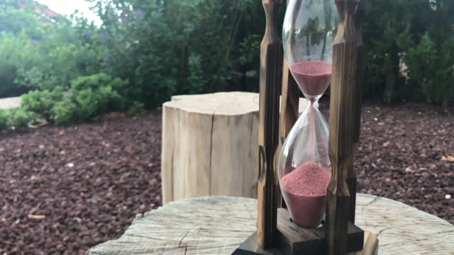 Hourglass among stumps in the garden