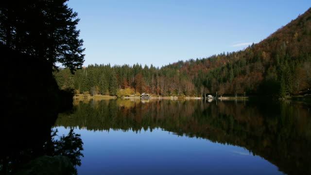 haus am see - kiefernwäldchen stock-videos und b-roll-filmmaterial