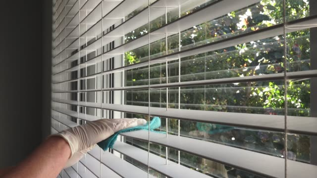 House cleaner removing dust from Venetian window blinds side view