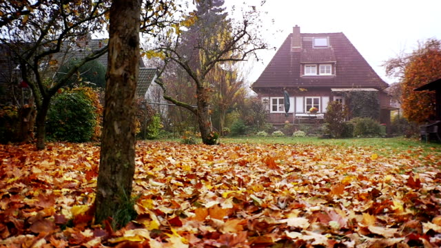 House, Family Home in autumn, large garden video