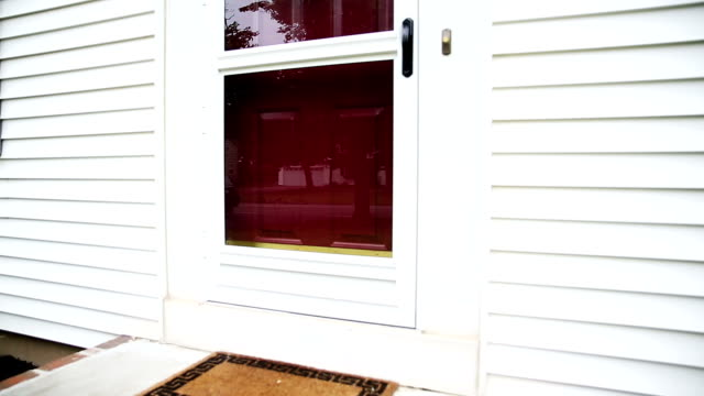 house front door - sahanlık stok videoları ve detay görüntü çekimi