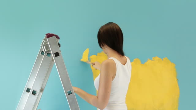 House Painter video
