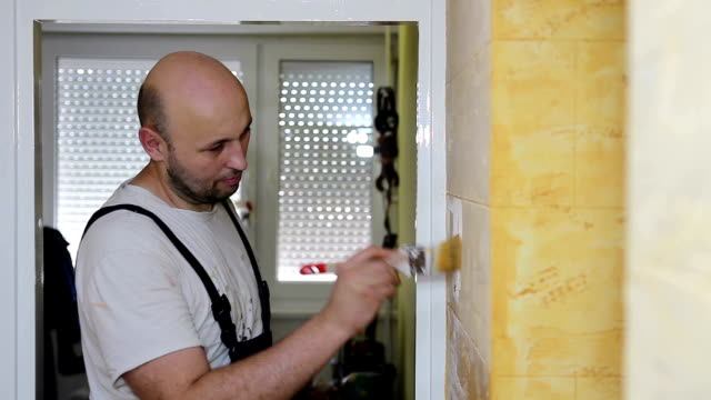 House Painter Working video