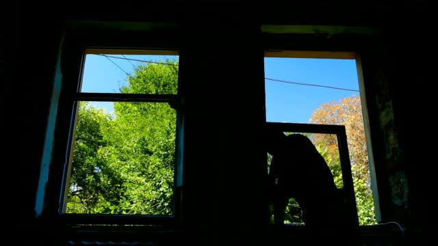 vídeos de stock e filmes b-roll de renovação de casa-instalação de janela nova - obras em casa janelas
