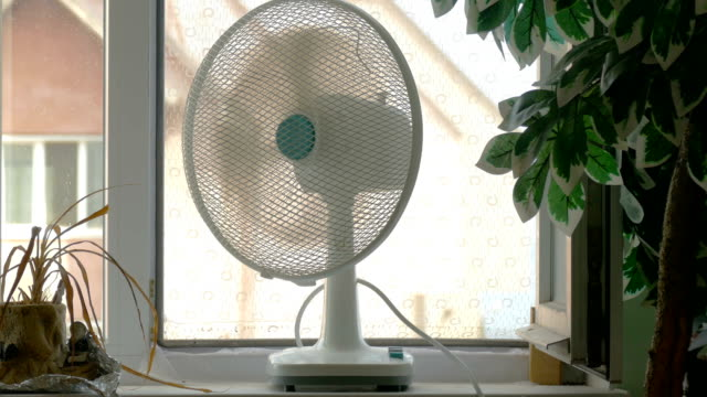 pencere pervazına odasında ev fan - pervane stok videoları ve detay görüntü çekimi