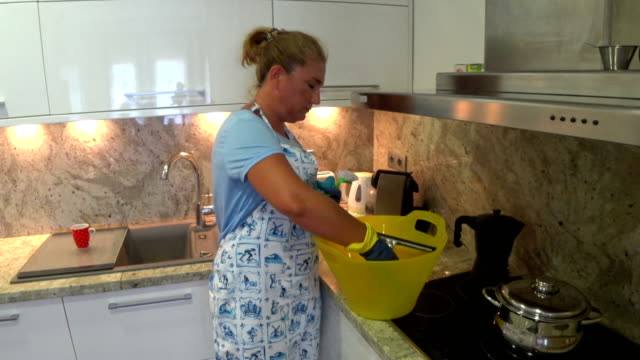 Housewife with cleaning equipment video