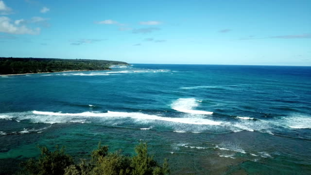 Hovering Low Over Beach and Waves on Maui Coastline video