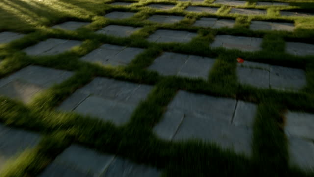 Hovering Over Pave Stones in a Lawn with Sun Glaring video