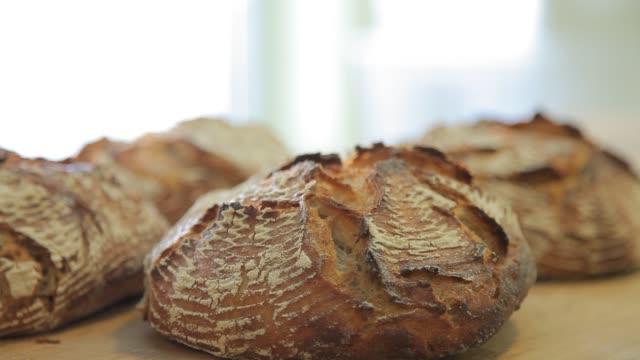 vídeos de stock e filmes b-roll de how to made a bread 16 - baking bread at home