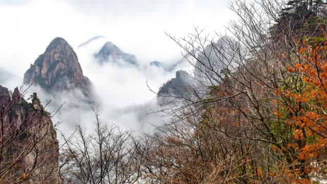 huangshan (sarı dağlar), doğu çin. - unesco stok videoları ve detay görüntü çekimi