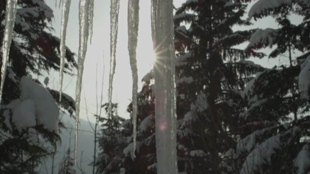 enorma istappar hängande från ett tak vid skogen i la clusaz i frankrike - icicle bildbanksvideor och videomaterial från bakom kulisserna