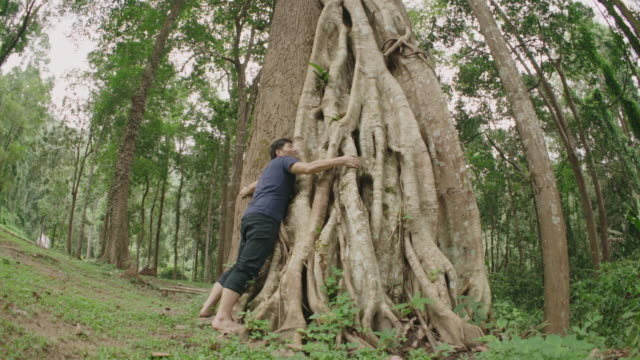Hugging Big Tree video